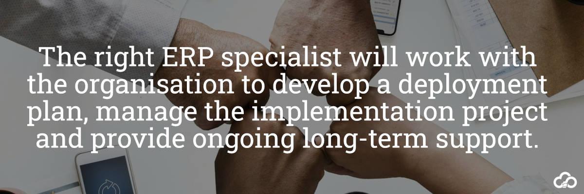 ERP Specialist
